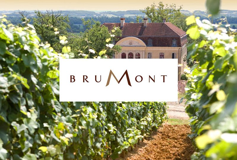 CIP – Vignobles Brumont